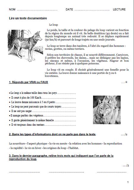 Lecture Ce1 Ce2 Cm1 Cm2 Texte Questionnaire Inf 233 Rence Lire